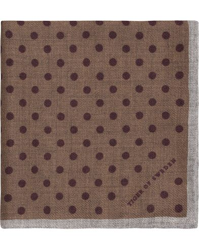 Tiger of Sweden Lariosa Dot Wool Pocket Square Brown  i gruppen Accessoarer / Näsdukar hos Care of Carl (13161010)