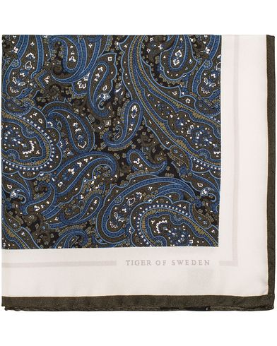 Tiger of Sweden Jaan Paisley Silk Pocket Square Green  i gruppen Accessoarer / Näsdukar hos Care of Carl (13161310)