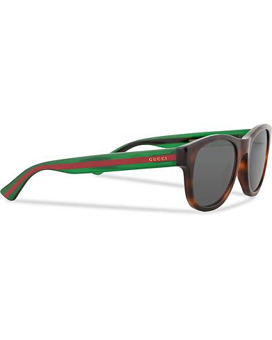 Gucci GG0003S Sunglasses Havana/Grey/Green  i gruppen Assesoarer / Solbriller / Buede solbriller hos Care of Carl (15169510)