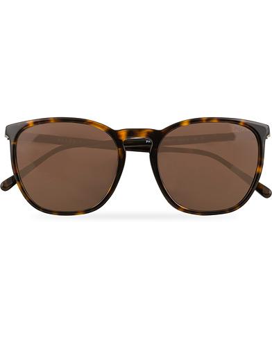 Polo Ralph Lauren 0PH4141 Sunglasses Dark Havana  i gruppen Assesoarer / Solbriller / Firkantede solbriller hos Care of Carl (15403910)